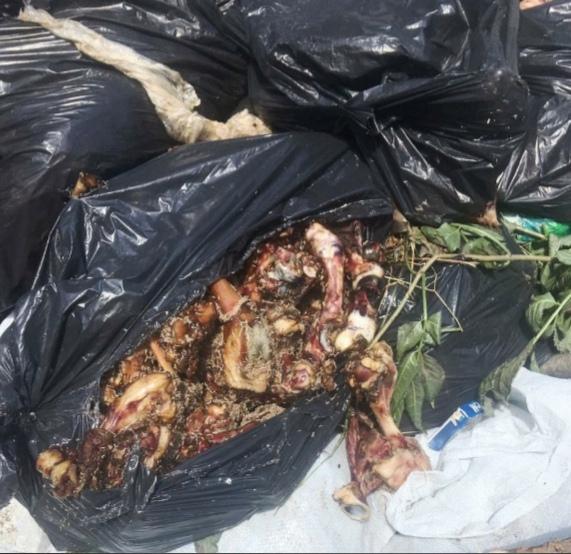 Опасные биоотходы обнаружили в Ессентуках