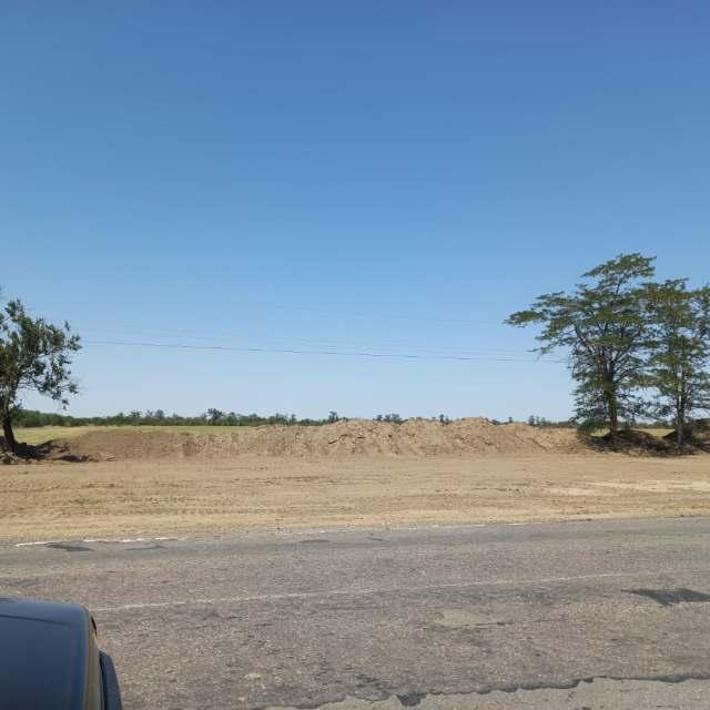 Уголовное дело возбуждено на Ставрополье по факту незаконной вырубки более 800 деревьев