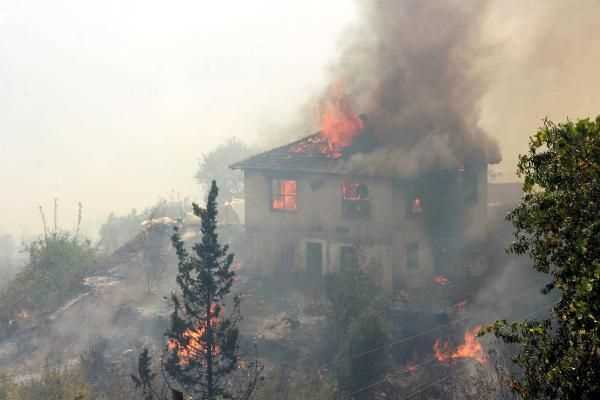 Сильный пожар уничтожил 13 домов в Анталии