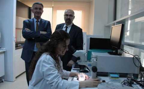 Турецкие ученые близки к излечению рака кишечника