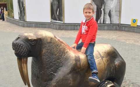 Сбитый на переходе 6-летний россиянин погиб в Бодруме