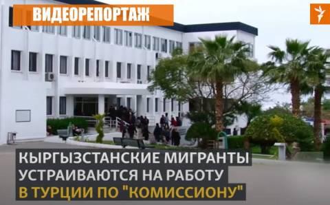 Сложности трудоустройства для кыргызстанцев в Турции