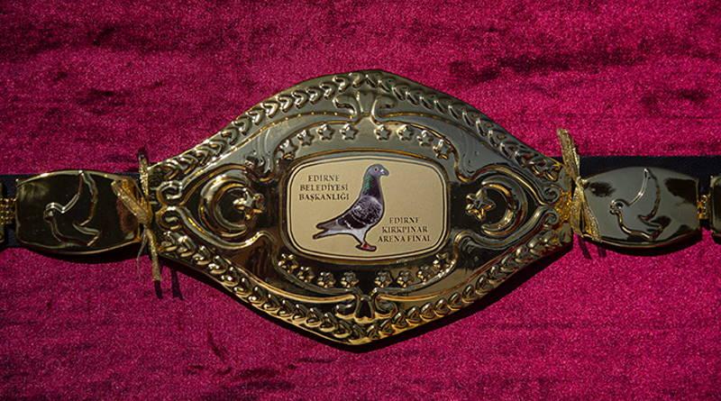 В Турции прошло состязание почтовых голубей