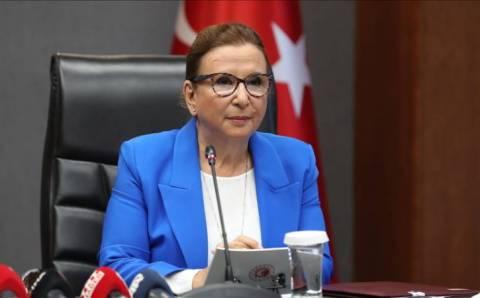 Свободное торговое соглашение между Анкарой и Лондоном