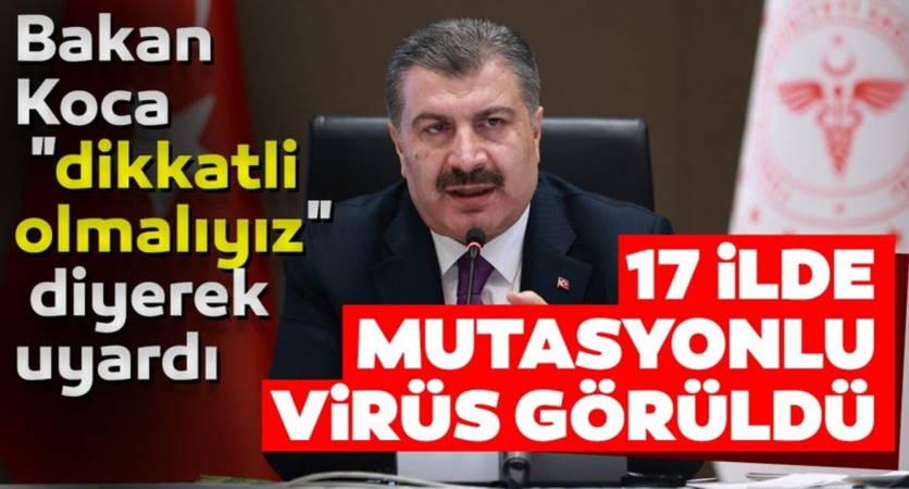 В 17 городах Турции обнаружен мутировавший COVID