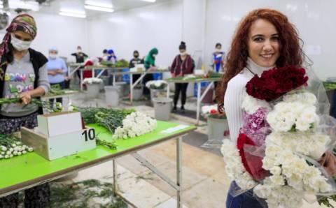 Влюбленные в 22 странах получат турецкие цветы