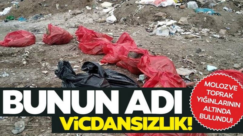 Ужасная находка на свалке в Анкаре