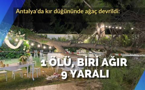 1 погиб и 9 пострадали после падения дерева на свадьбе