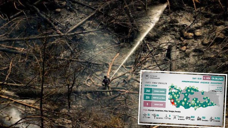 13-й день пожаров: Осталась гореть только Мугла