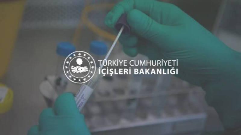 МВД назвало дату введения обязательных ПЦР-тестов