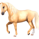 Download Free Fan Art Resources Star Stable