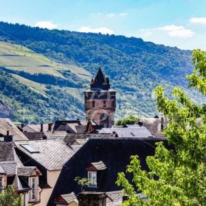 Stadtgarten Oberwesel-9760-2 - News vom Rhein