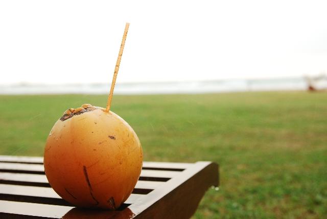 ココナッツオイルの効能と使い方あれこれ