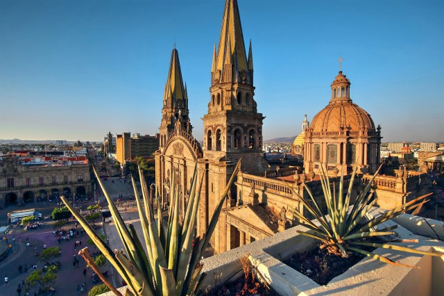 Guadalajara Cathedral (Cathedral of the Assumption of Our Lady), and agave plants.