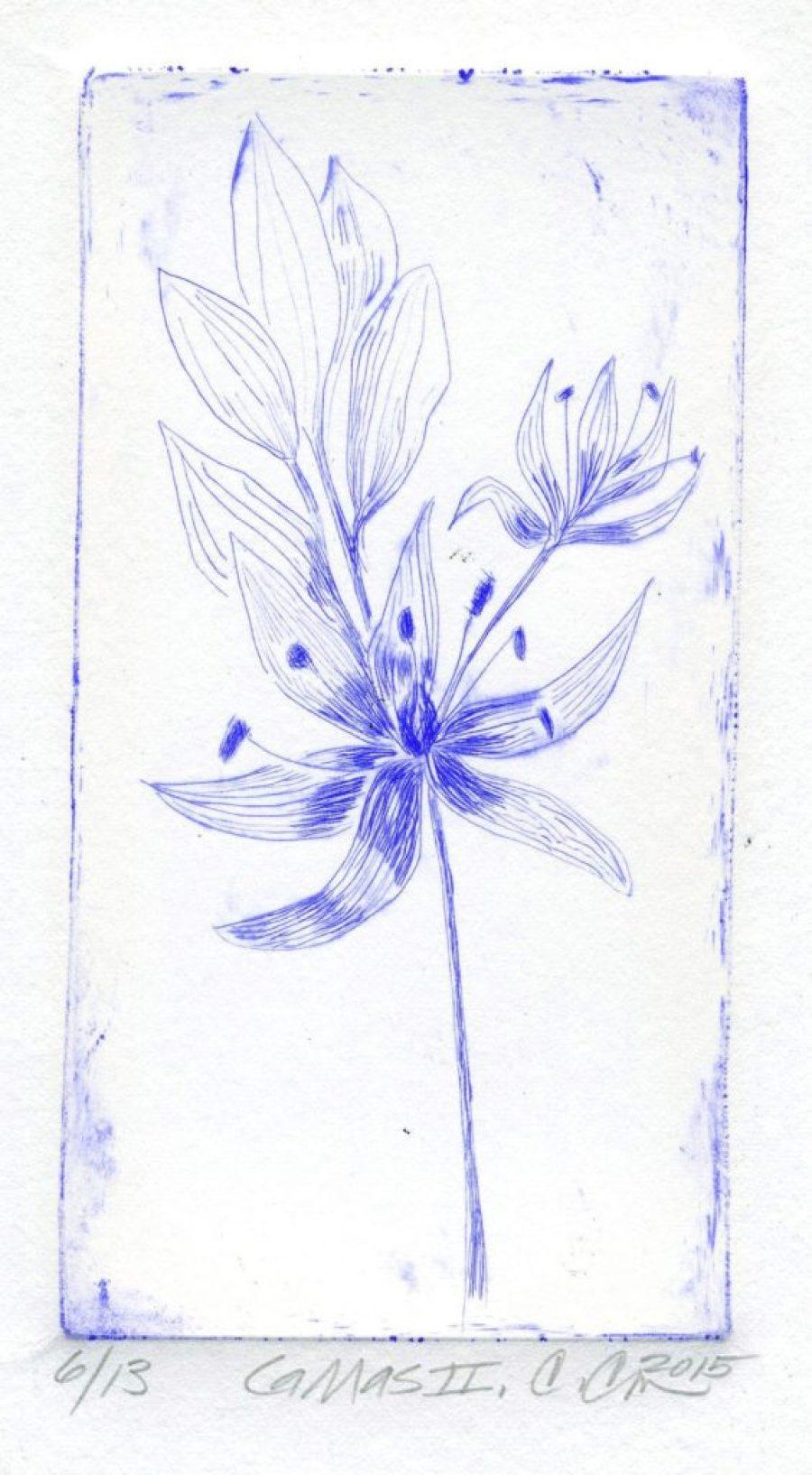 Carol Chapel, <em>CaMas001</em>, made with YInMn blue using DryPoint printing. Courtesy Carol Chapel.