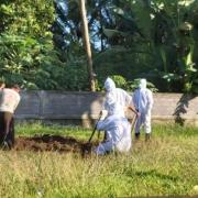 Coronavirus update new death confirmed in Bali 57 years old Balinese man from Mengwi on Sunday night ( 5/31/2020 )