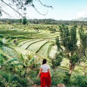 Bali Travellers Choice Best 2021