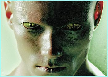 Face Transformation