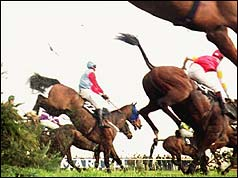 Horses racing in the 1993 Grand National