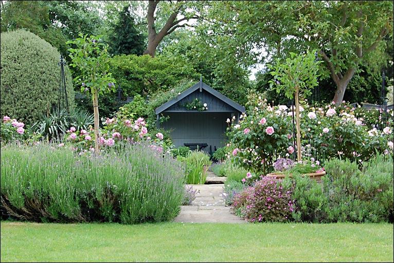 rose garden design