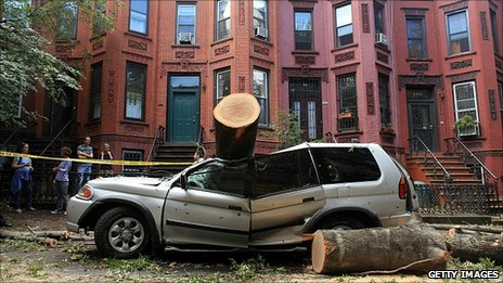 Car crushed by tree in Brooklyn. 17 Sept 2010
