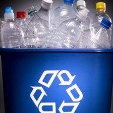 Bottles in a recycling bin