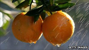 Inspecting oranges manually is dangerous, say researchers