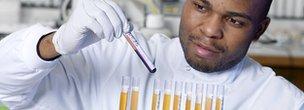 Man analysing blood samples