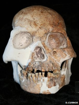 Longlin cráneo (Darren Curnoe)
