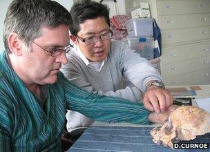 Los investigadores discuten cráneo (D.Curnoe)