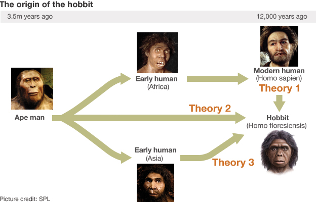 The origin of the hobbit inforgraphic
