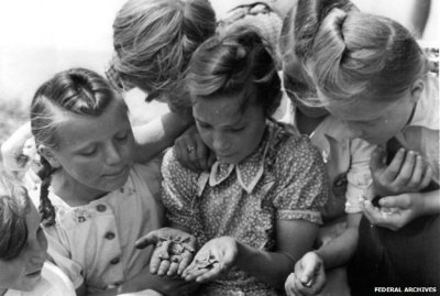 Some children gathered around holding potato beetles - image taken in East Germany in 1950 (Federal Archives/Bundesarchiv, Bild 183-S99732 / photo: Schmidtke)