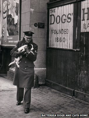 RAF serviceman bringing a dog to Battersea's gates in WW2