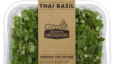 Produce from Growing Underground