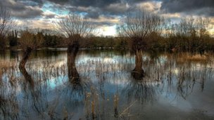Bruce Hammersley took this picture of a flooded meadow in Witney, Oxfordshire