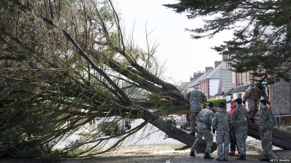 Soldiers help a tree surgeon remove a fallen tree in Egham, west London