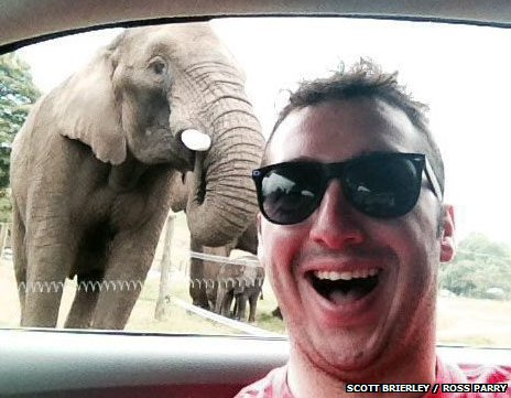 Scott Brierley and Latabe the elephant