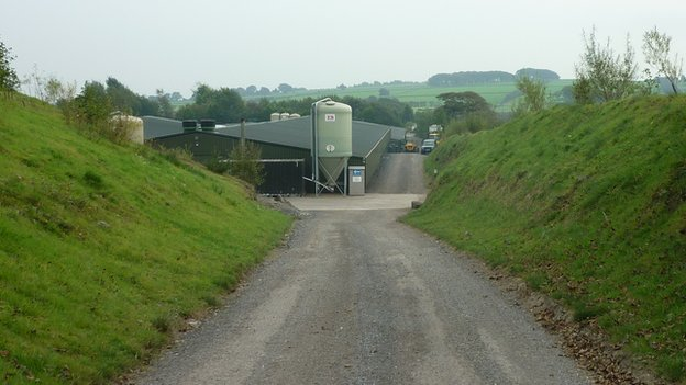 The road to Lower Farm