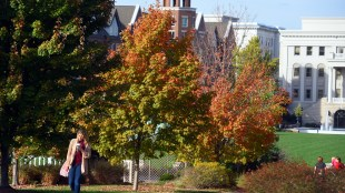 Fall colors at Belmont University