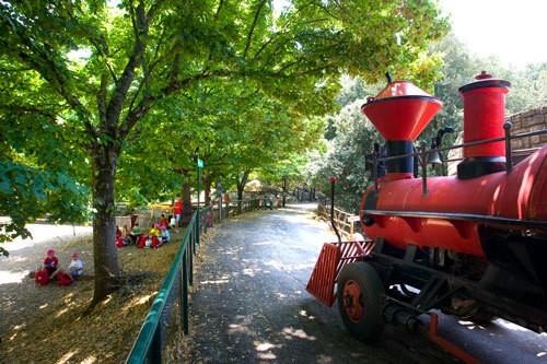 parco città della domenica