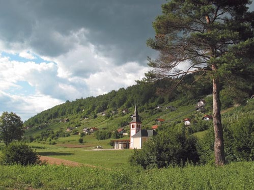 Hilly Dolenjska Region of Slovenia