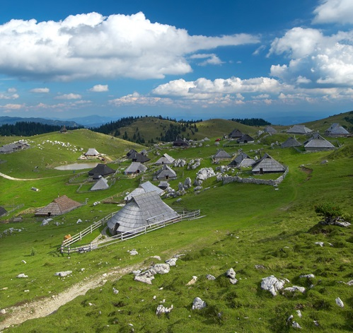 Herders at Beautiful country side of Slovenia