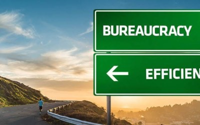 Bureaucracy-Efficiency