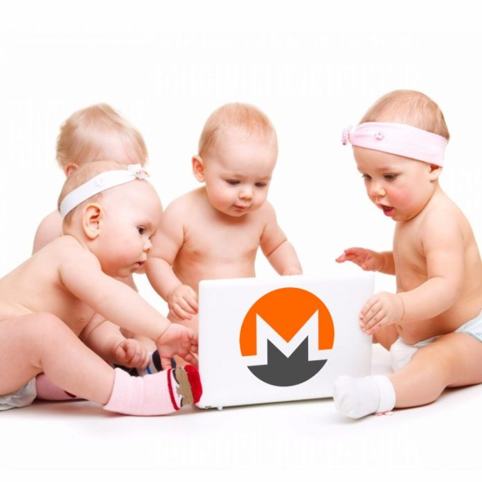 Privacy-Centric Coin XMR Splits Into Four Different Monero Protocols
