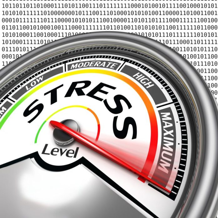 Preparations for the Bitcoin Cash Stress Test Day Begin