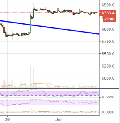 Markets Update: Coinex Dominates Volume Rankings Amid Post-Bounce Consolidation