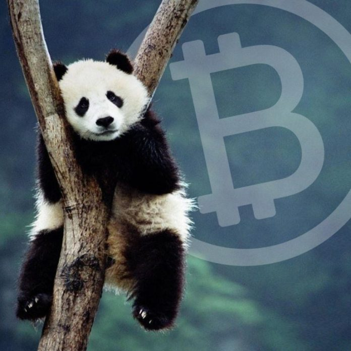 'Crypto-Accessibility' - Panda Exchange Expands Crypto-to-Fiat Trading Markets
