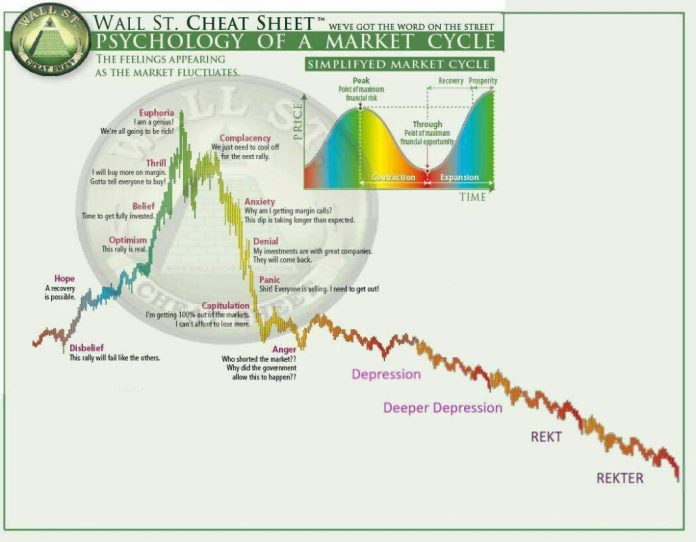Cryptocurrency Memes: The Only Assets That Can Survive a Bear Market