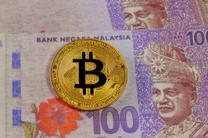 Central Bank to Decide Fate of Cryptocurrency Issuance