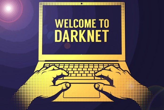 Despite Setbacks Darknet Markets Show Continuous Growth in 2019